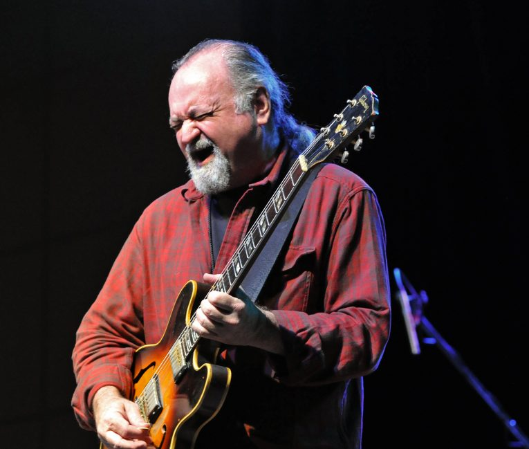 Interview, Tinsley Ellis, Rock and Blues Muse